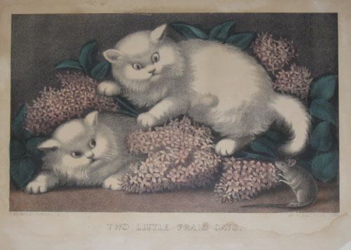 (NATURAL HISTORY). CURRIER, Nathaniel & James IVES. Two Little Fraid Cats. Published by Currier & Ives. 125 Nassau Street New York [c1872-80].